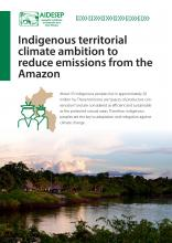 Indigenous territorial climate ambition to reduce emissions from the Amazon