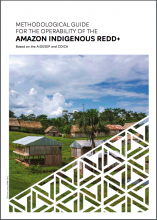METHODOLOGICAL GUIDE FOR THE OPERABILITY OF THE AMAZON INDIGENOUS REDD+